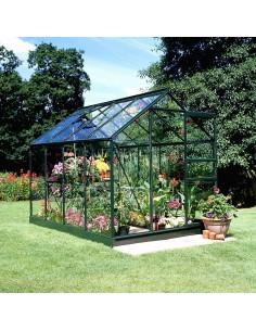 Serre de jardin Popular 5 m² laquée verte - Verre horticole de 3 mm