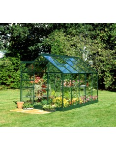 Serre de jardin Popular 6,2 m² laquée verte - Verre horticole de 3 mm