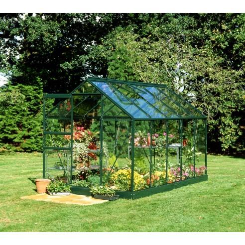 Serre Popular HALLS 6.2 m² laquée verte - Verre horticole de 3 mm