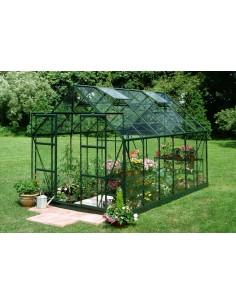Serre de jardin Magnum 9,9 m² laquée verte - Verre horticole de 3 mm