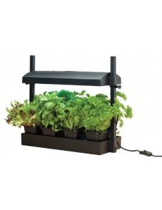 Micro grow light garden - Serre chauffante électrique ACD