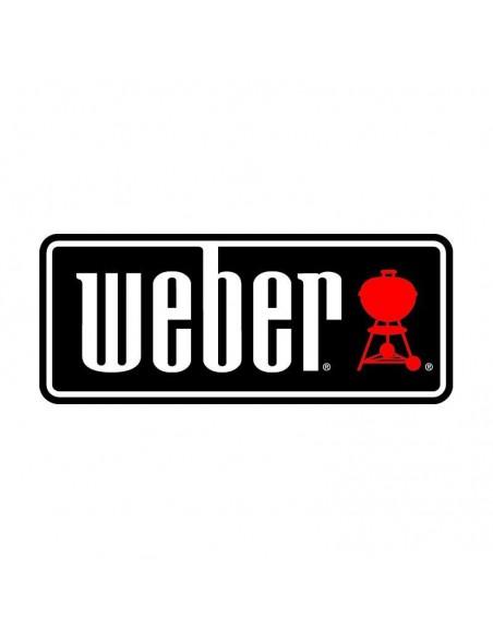 Barbecue à gaz Q 2200 noir avec plancha 6559 - Weber