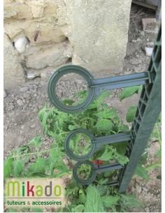 Attaches x 6 pour tuteur à tomate 180 cm vert foncé - Pouss'vert