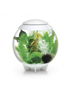 Aquarium Biorb Halo 30L MCR - Oase