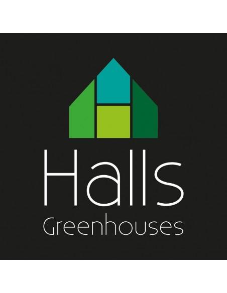 Serre Popular HALLS 3,8 m² laquée verte - Verre horticole de 3 mm