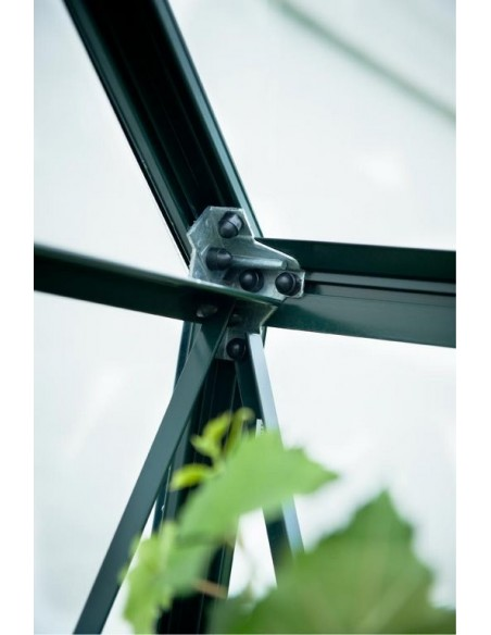 Serre Magnum HALLS 8.2 m² laquée verte en verre 3 mm