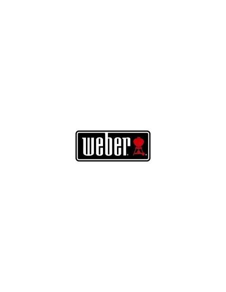 Plancha en fonte d'acier pour barbecue Weber à gaz Q 3000
