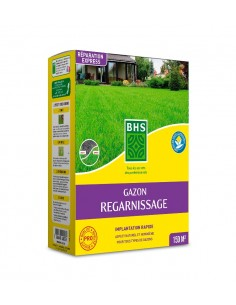 Gazon regarnissage 3 kg pour 100 m² - BHS