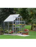 Serre Popular HALLS 2.5 m² - Verre horticole de 3 mm