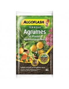 Terreau plantes méditérranéennes et agrumes ALGOFLASH 6L