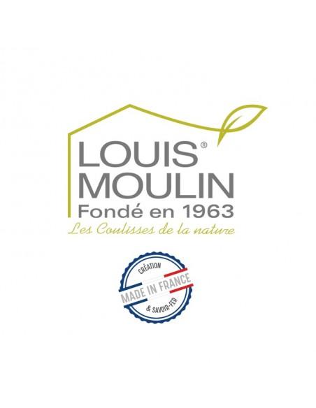 Treillage mural oiseau fer vieilli Louis Moulin