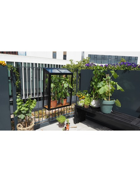 Serre Urban balcony Juliana anthracite 0.16 m² - Verre trempé 4 mm