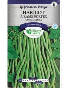 Haricot à rame fortex 50g - Les Doigts Verts