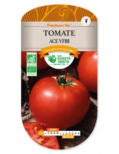 Tomate ace - AB - Les Doigts Verts