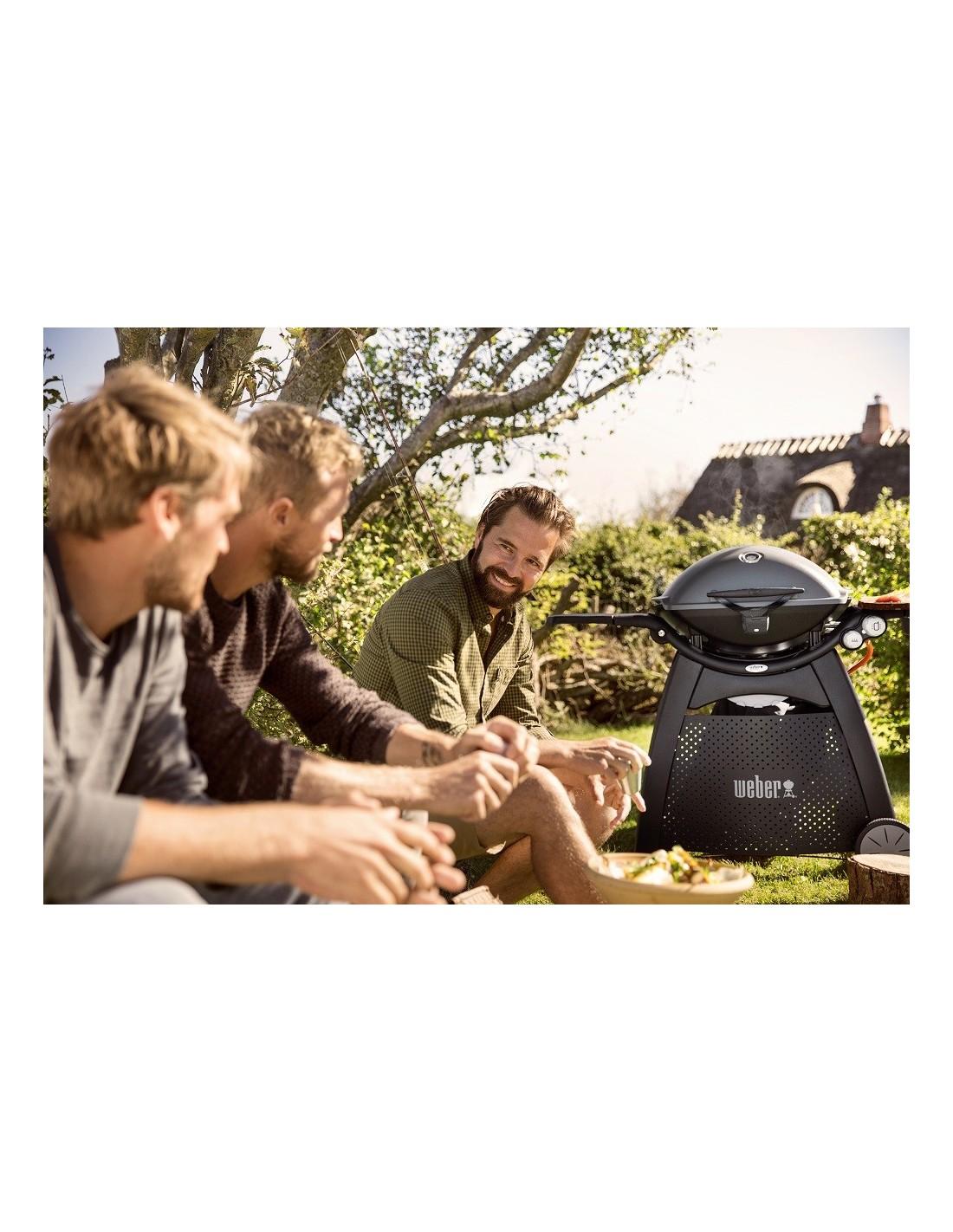 barbecue gaz q3200 black noir avec chariot weber. Black Bedroom Furniture Sets. Home Design Ideas